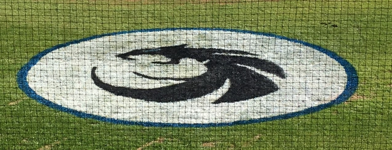 Baseball Field Logo Stencils  | Softball Field Stencils
