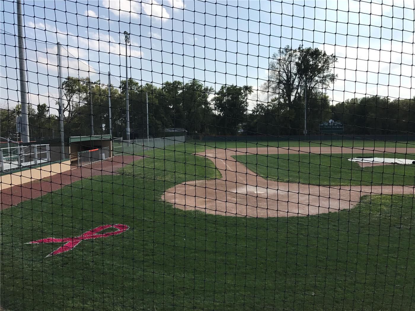 Pink Ribbon Stencil Painted Baseball Field