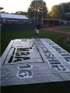 MN Baseball Logo Painting1