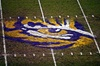 Products/Stencils/70003-Custom-Stencil/LSU-Eye-of-the-Tiger-on-Turf.jpg